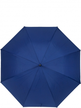 Зонт-трость ELEGANZZA (Элеганза) T-05-0379D Голубой фото №2 01-00026838